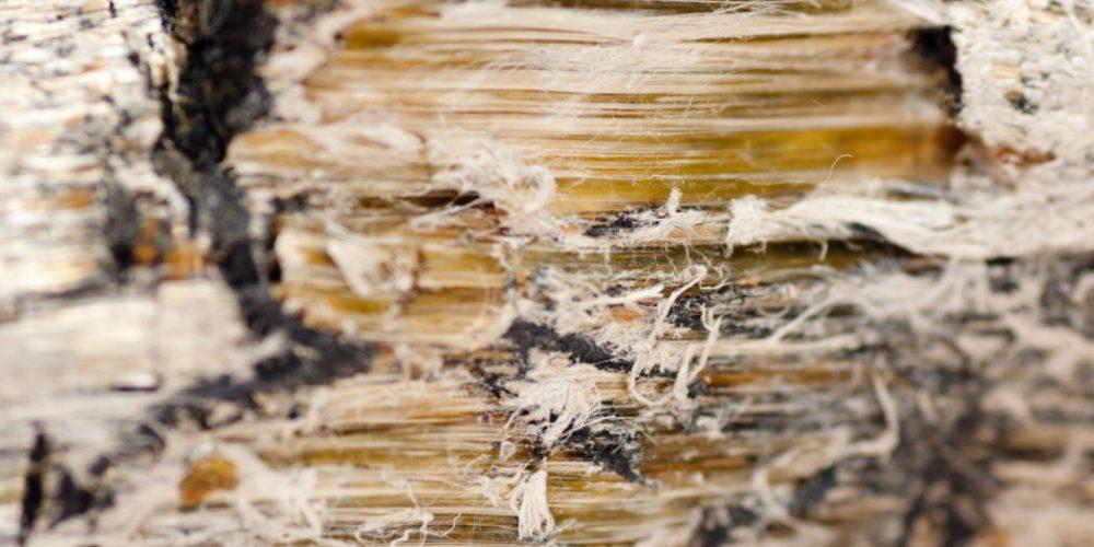 Décontamination de vermiculite : comment s'y prendre?